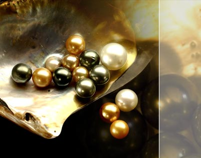 pearls-come-from-oysters