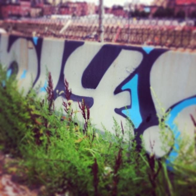 photo (93)